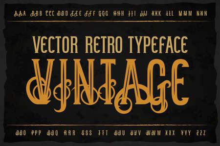 Vector vintage typeface. Vector font