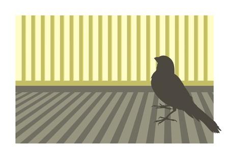 canary bird: Canary bird silhouette with geometric background