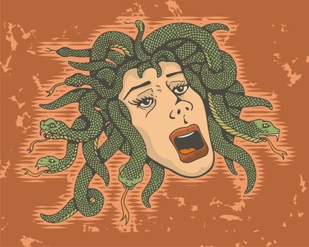 medusa: Head of Medusa