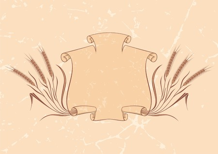 Scroll banner and wheat on beige background Illustration