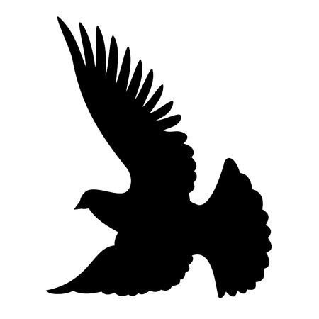 pigeons: Flying colombe silhouette sur fond blanc Illustration