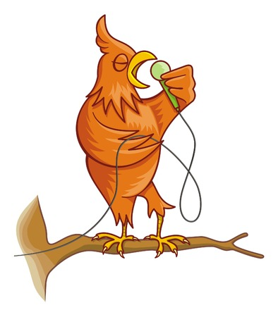 Cartoon illustration of an orange canary bird on a tree branch singing Illustration