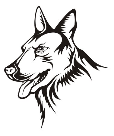 Tattoo illustration of german shepherd guard dog Illustration