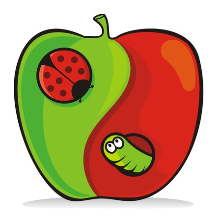 apple worm: Yin yang apple cartoon with ladybug and worm