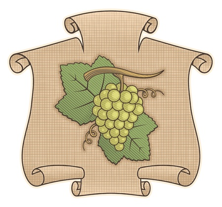 Grapes icon on beige scroll with woodcut shading. Vector