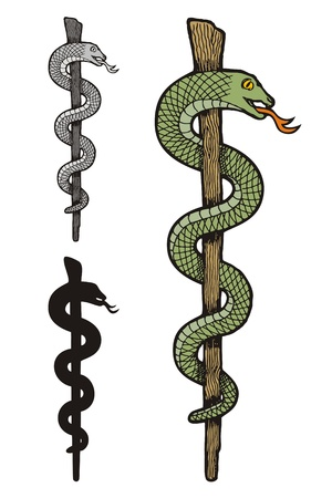 Illustration of three versions of one snake caduceus, colored, silhouette and gray scale.