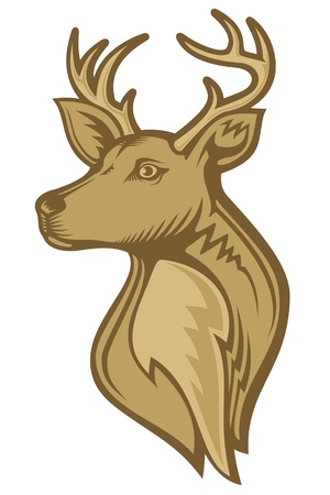 Deer head illustration with brown tones isolated on white background. Vector