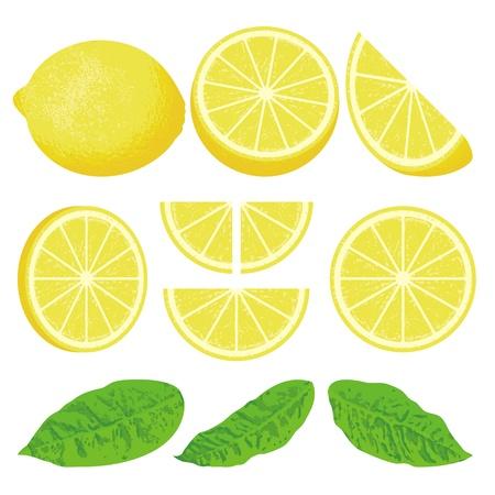Un citron et des tranches de l'ensemble des angles différents, également trois versions de feuilles. Vecteurs