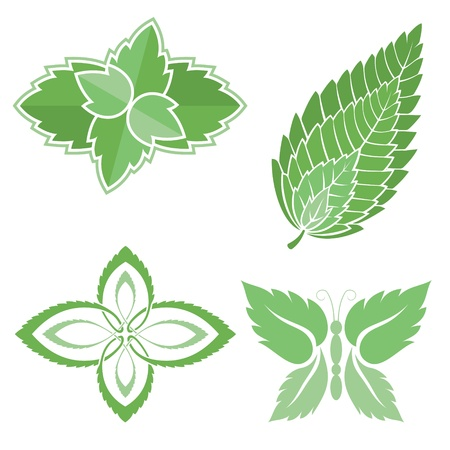 Four green mint leaves icons isolated on white background.