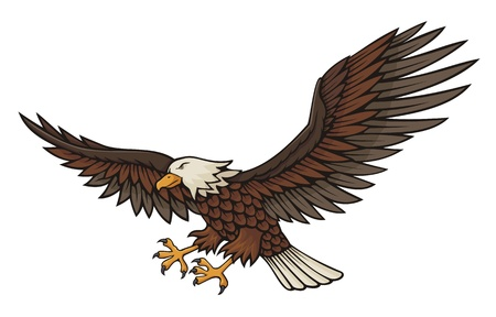 eagle feather: Eagle attacking illustration isolated on white background.