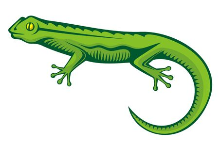 A green lizard with woodcut shading isolated on white background. Stock Vector - 11092912
