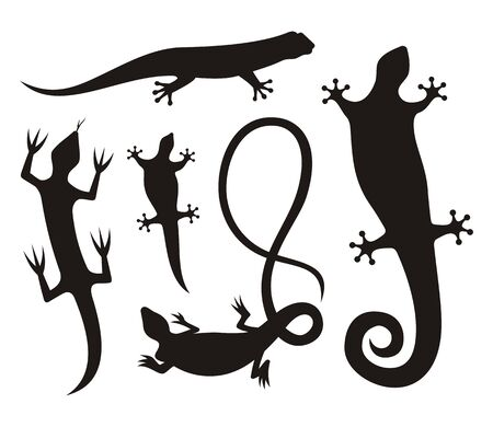 Five lizard silhouette icons isolated on white background. Stock Vector - 11092908
