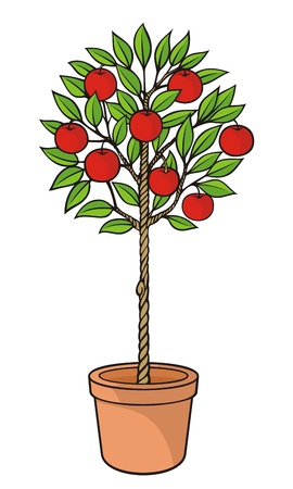 plant in pot: Decoratieve appel boom met rode appels in de pot. Stock Illustratie