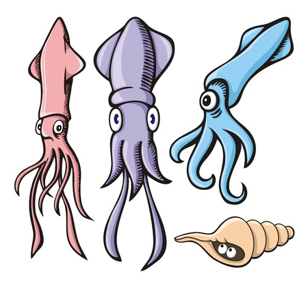cephalopod: Three cute squid cartoons and a sea shell isolated on white.