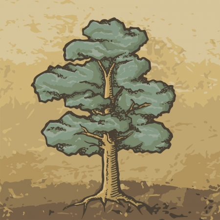 woodcut: Hand drawn colored oak tree with rough woodcut shading on grunge beige Illustration
