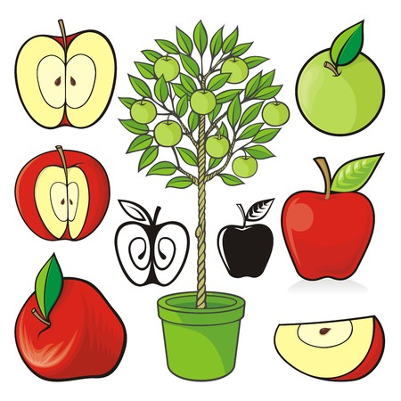 green apple slice: Assorted hand drawn colored apple icons and an apple tree isolated on white background. Illustration