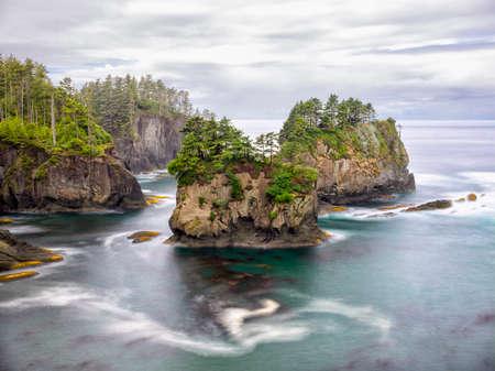 flattery: Salish Sea