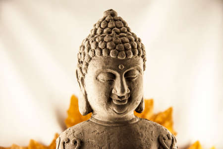Budda Head  photo