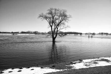 Elbe in winter, Schleswig-Holstein, Germany