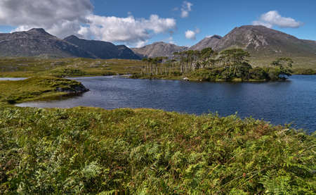 bens: One of the famed Twelve Bens overshadows a lake in the center of Connemara, Irleland Stock Photo