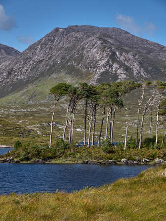 connemara: The famed Twelve Bens overshadow a lake in the center of Connemara, Irleland