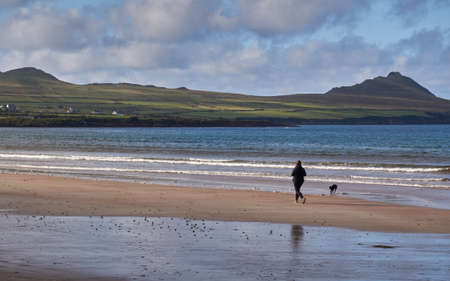 go for: A jogger and her dog go for a run at Beal Bn beach in Dingle, Ireland.