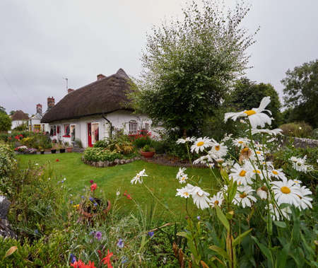 thatched cottage: Traditional thatched cottage with a beautiful garden in Adare, Ireland