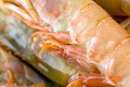 Argentinian king prawns