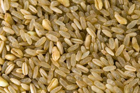 Mixed rice Stockfoto