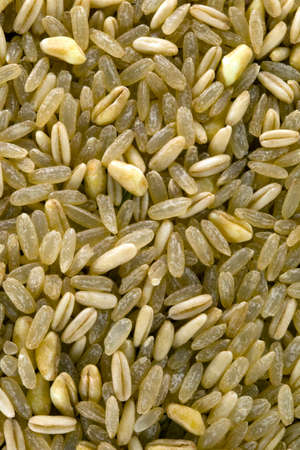 Rice mix Stockfoto