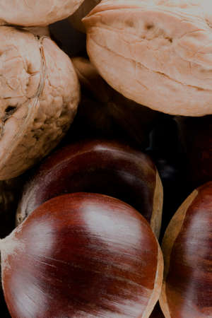 Walnuts and chestnuts close up Stockfoto