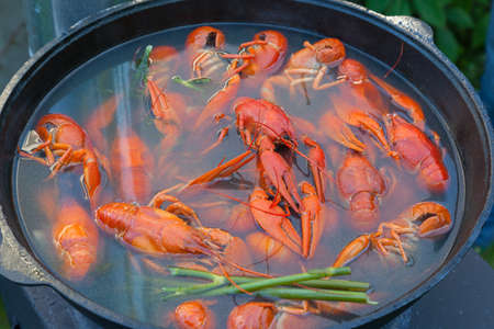 seasoned: Boiled crayfish in a large cast-iron pot