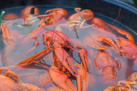 lobster pot: Boiled crayfish in a large cast-iron pot