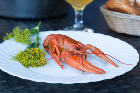 seasoned: A boiled crayfish served on a white plate decorated with dill flowers