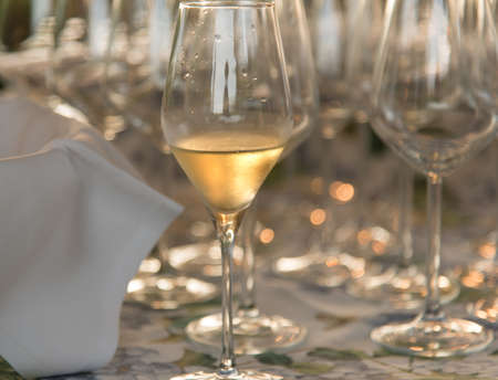 Glasses of sparkling champagne with bokeh, close up. Warm. Celebration event, holidays, drinks concept. Companion for best family or friends memories. Anniversary, wedding day or Christmas time