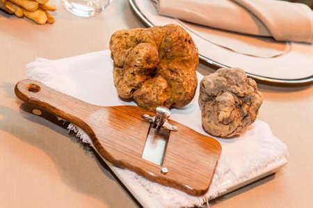 two big white alba truffles on wooden slicer and white napkin on starred restaurant table