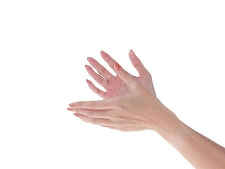 Applauding female hands photo