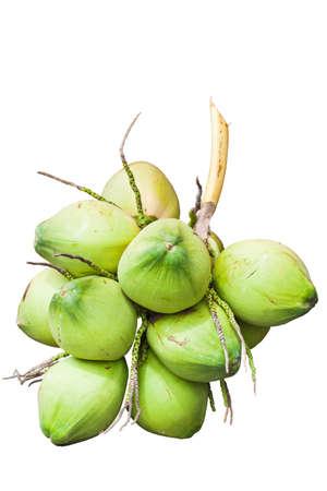 coco: Fruta; Coco verde aisladas sobre fondo blanco Foto de archivo