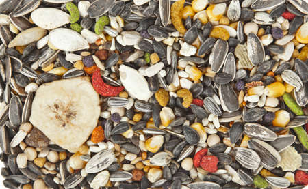 Bird food background photo