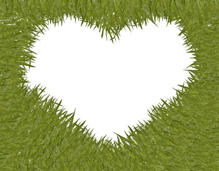 green grass with heart shape frame photo