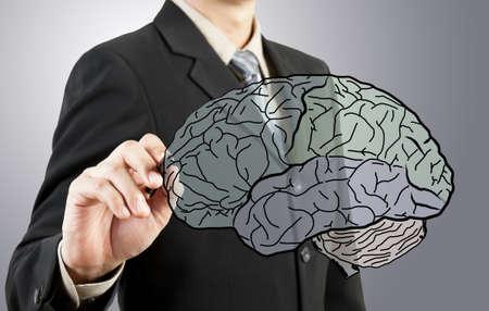 Business man drawing human brain diagram photo