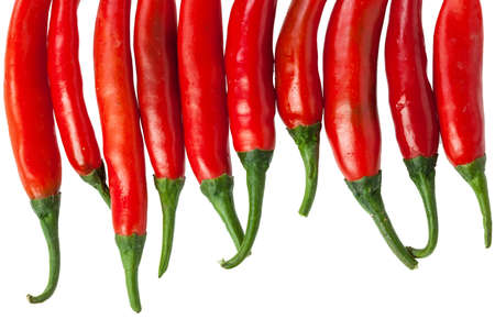 Red chili peppers isolated on the white photo
