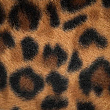 animal skin: leopard or jaguar skin pattern background