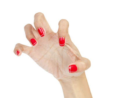 Halloween hand photo