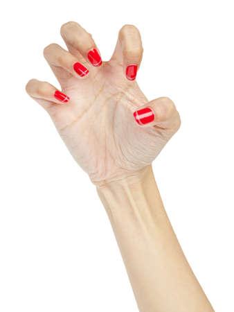 Halloween hand Stock Photo - 16151701