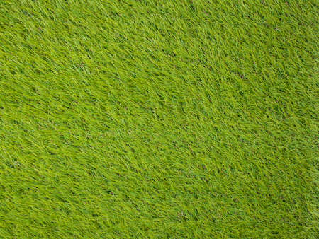 Artificial turf japanese green photo
