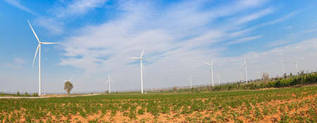 Eco power, wind turbines field panorama photo