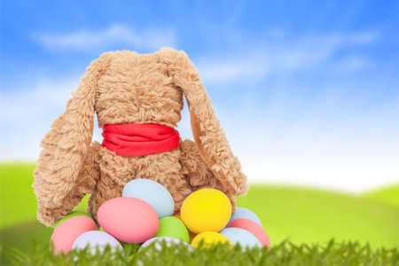 Rabbit, sit on green grass and group of colorful eggs are behind with blue sky background for happy easter festival photo