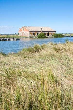 brackish water: The Comacchio valleys  were born around the 10th century and contain brackish water. The territory is currently 13.000 acres and it