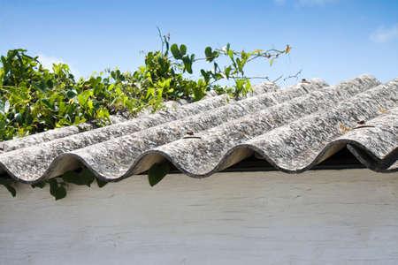 carcinogen: Techo de asbesto Foto de archivo